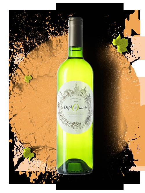 bouteille, le diplomate, vin, vignes, blanc, bordeaux